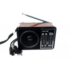 Радиоприемник NK-204RB